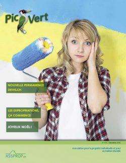 Journal Pic-Vert N°115